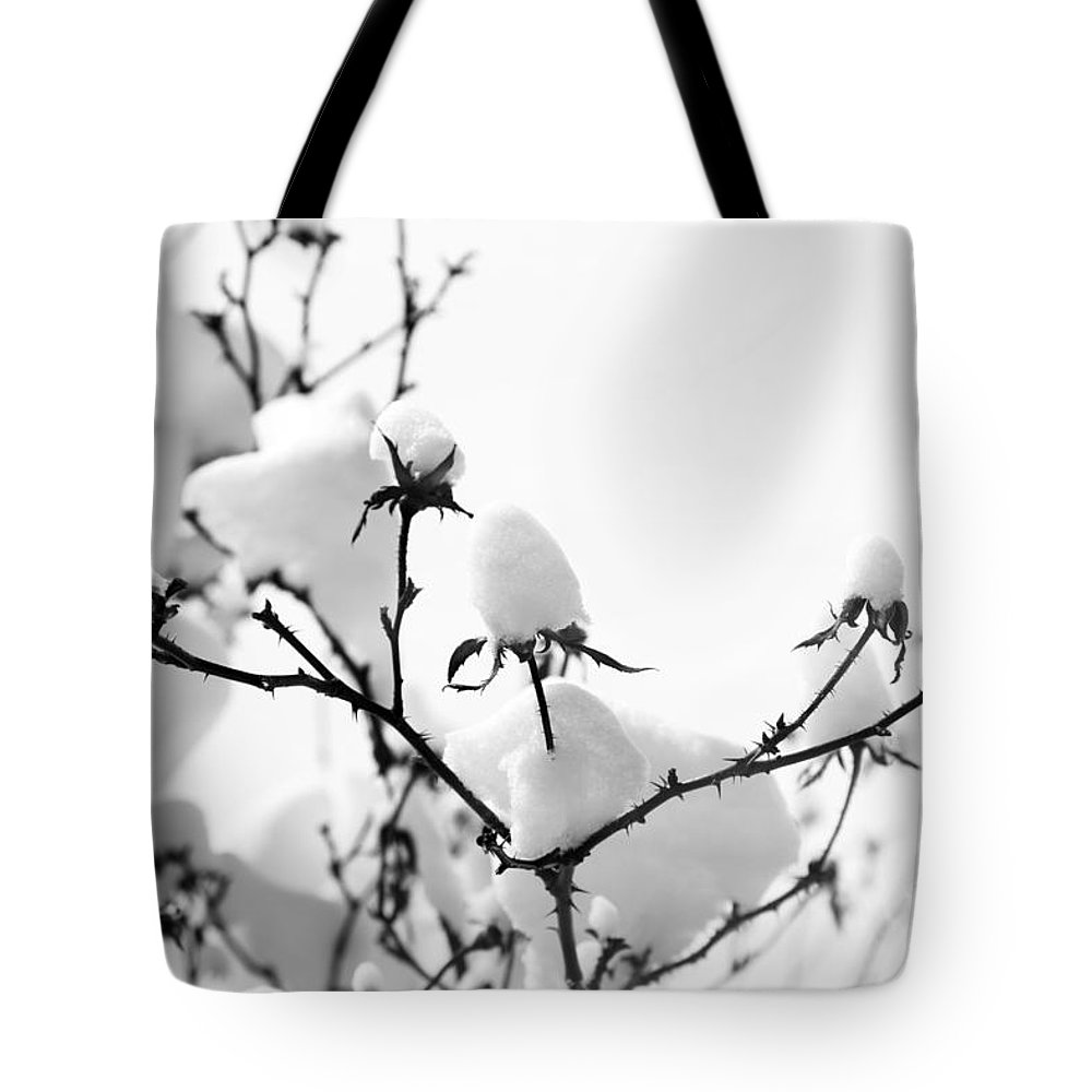 Branches Tote Bag featuring the photograph Branches by Amanda Barcon