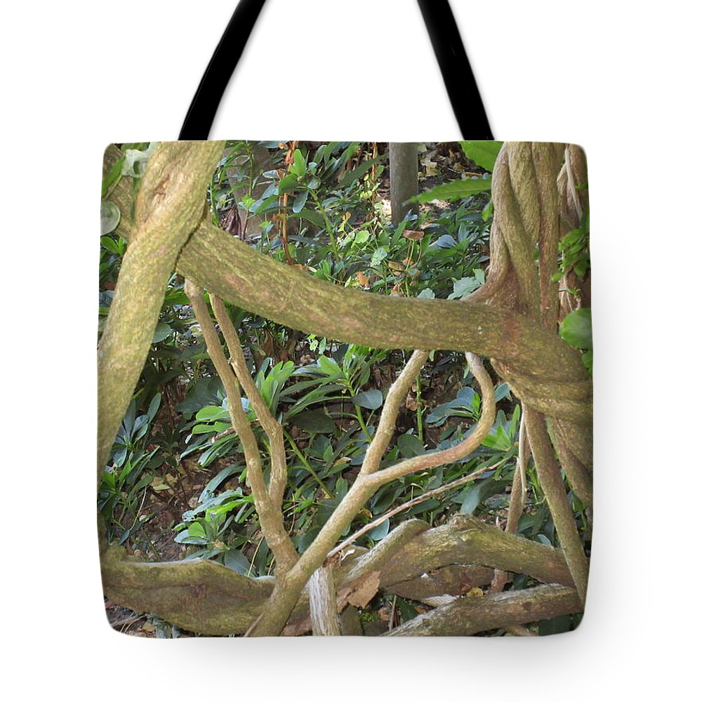 Branches Tote Bag featuring the photograph Branches by Emily Boltinghouse