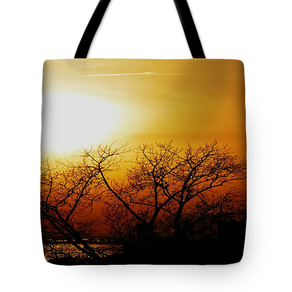 Landscape Tote Bag featuring the photograph Branches by Kendall Eutemey