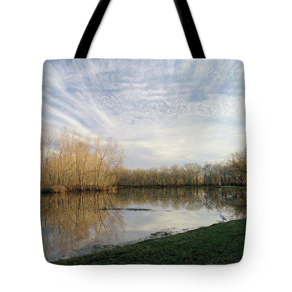 Texas Wildlife Tote Bag featuring the photograph Brazos Bend White Egret Solitude by Katrina Lau