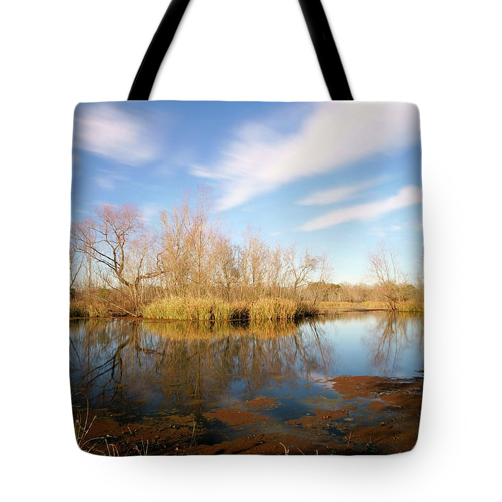 Texas Wetland Tote Bag featuring the photograph Brazos Bend Winter Bliss by Katrina Lau