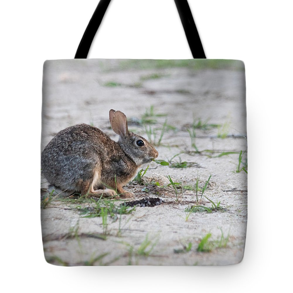 Bunny Tote Bag featuring the photograph Breakfast Or Playtime by JR Cox