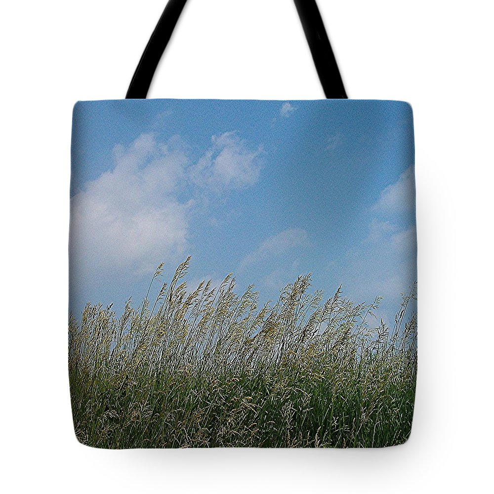 Sky Tote Bag featuring the photograph Breezy Day by Sara Raber