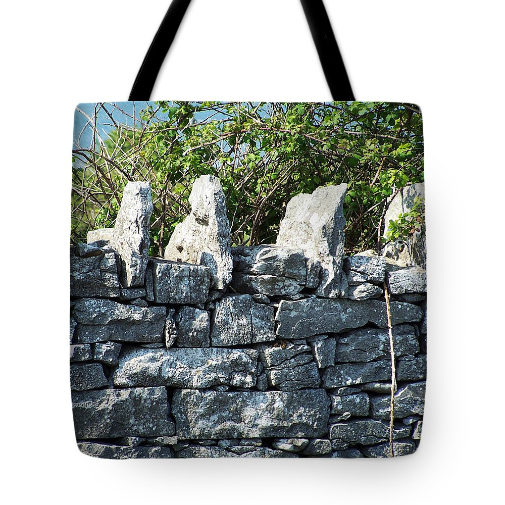 Irish Tote Bag featuring the photograph Briars And Stones New Quay Ireland County Clare by Teresa Mucha