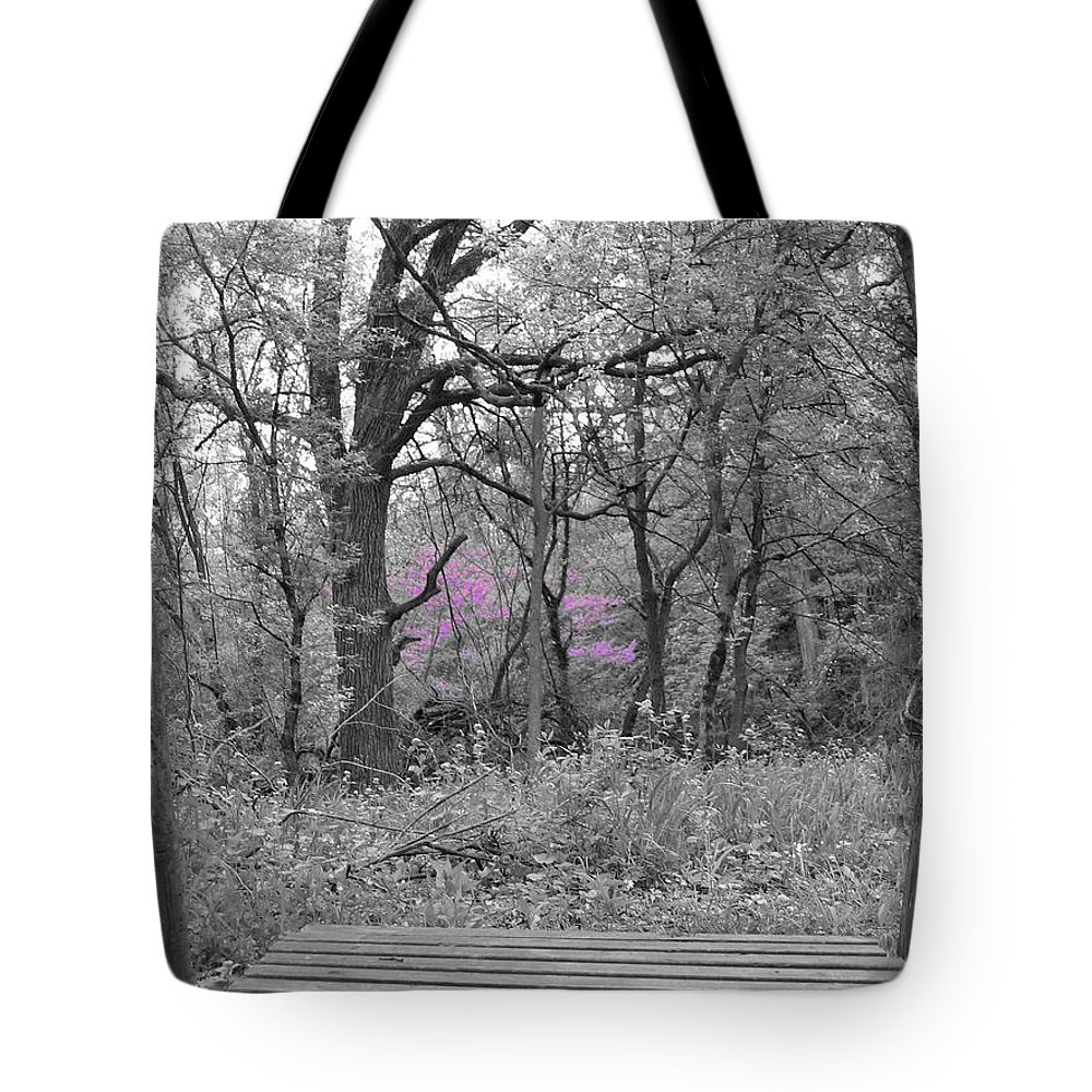 Landscape Tote Bag featuring the photograph Bridge To Beauty by Dylan Punke