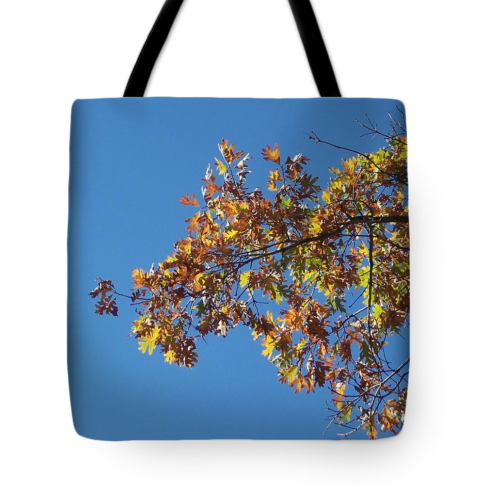 Branch Tote Bag featuring the photograph Bright Autumn Branch by Michelle Miron-Rebbe
