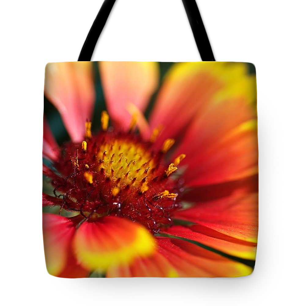 Flower Tote Bag featuring the photograph Bright Blanket Flower by Joy Watson
