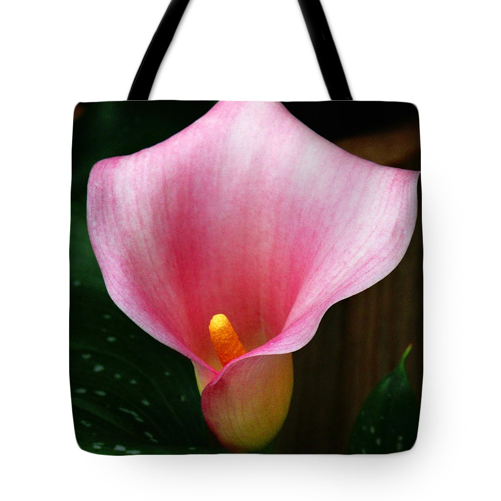 Bright Pink Tote Bag featuring the photograph Bright Pink Calla by Marilyn Hunt