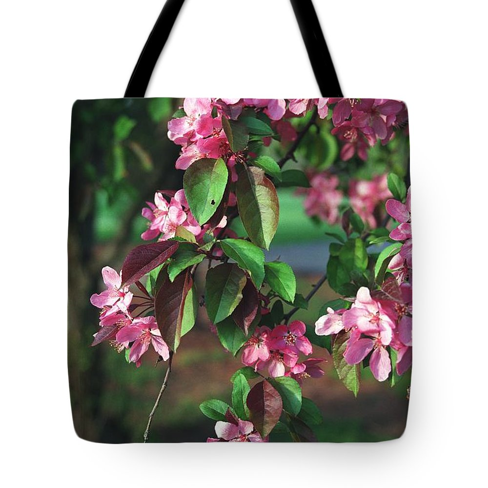 Bloom Tote Bag featuring the photograph Brilliant by Jonathan Michael Bowman