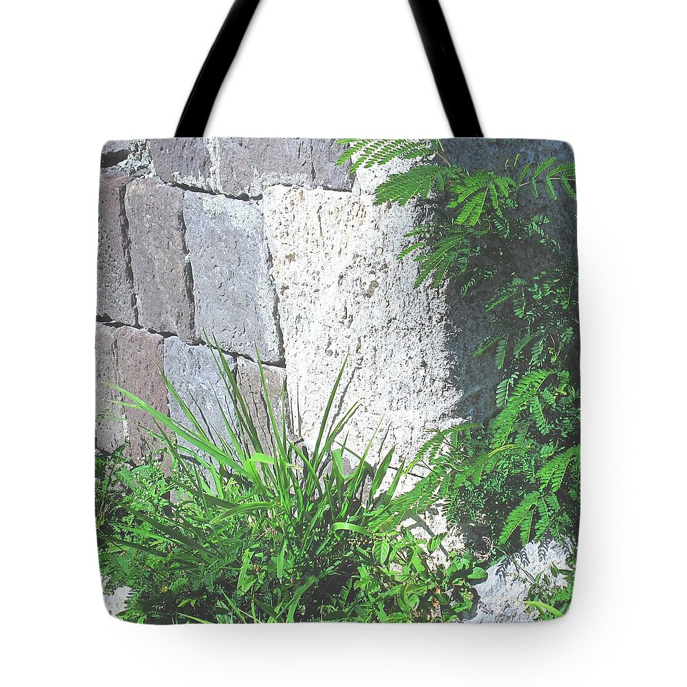 Brimstone Tote Bag featuring the photograph Brimstone Wall by Ian MacDonald