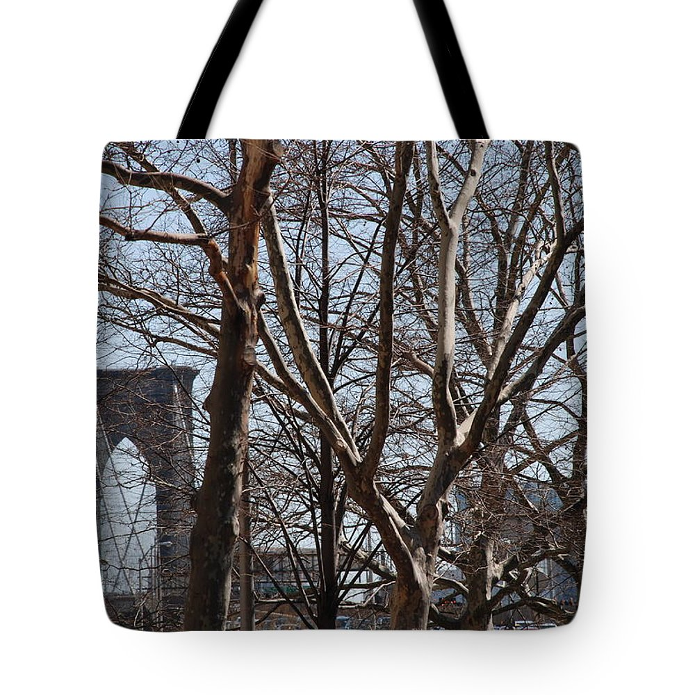 Architecture Tote Bag featuring the photograph Brooklyn Bridge Thru The Trees by Rob Hans