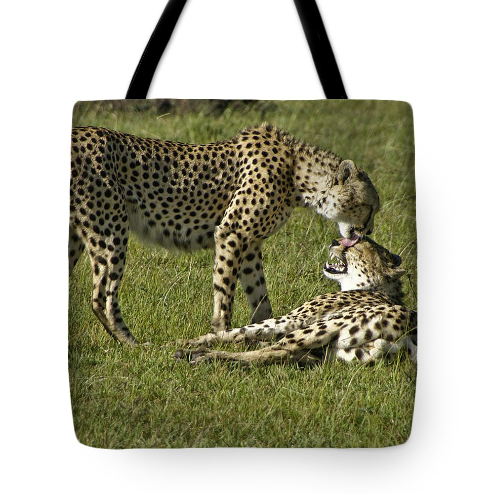 Africa Tote Bag featuring the photograph Brotherly Love by Michele Burgess