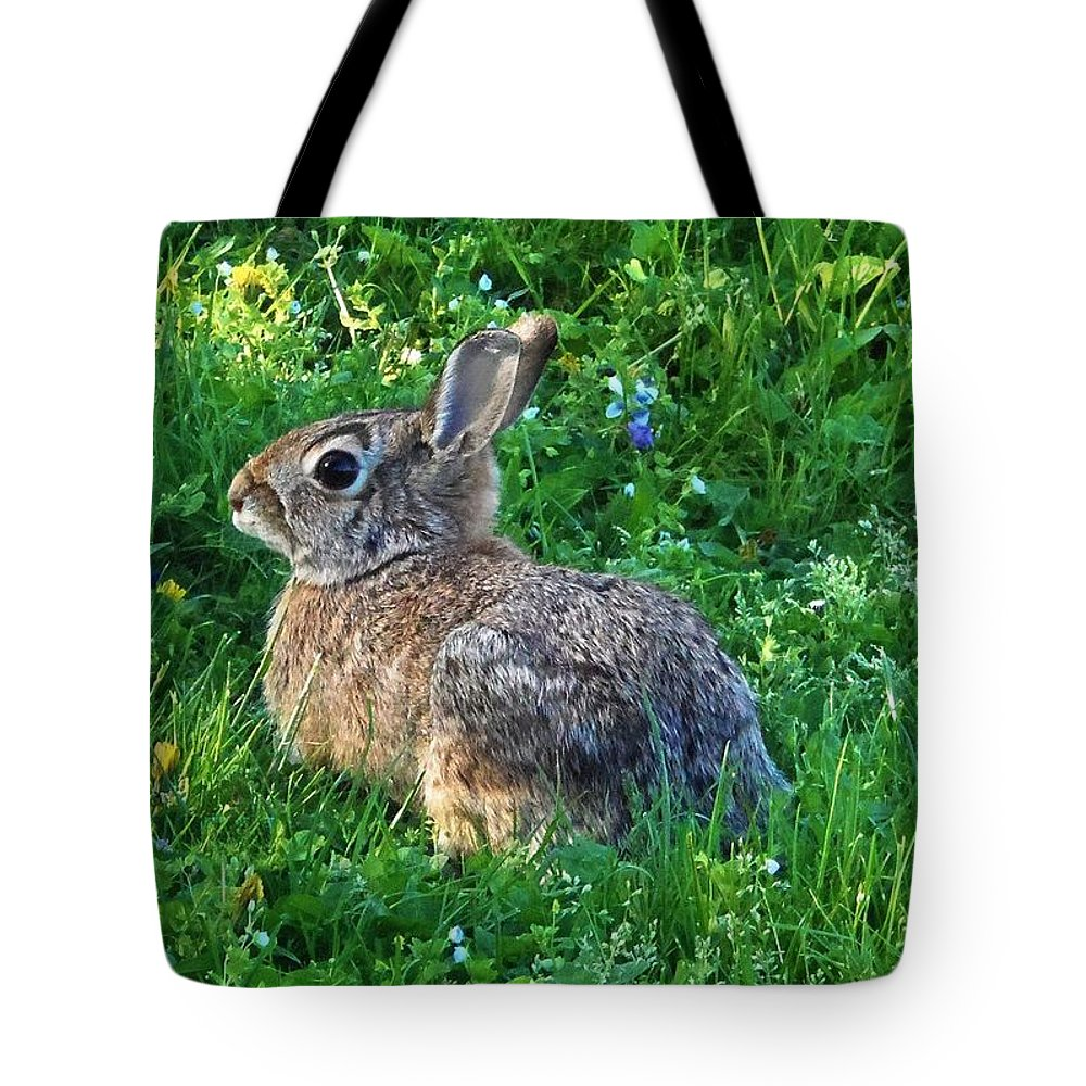 Rabbit Tote Bag featuring the photograph Brow Pencil by Cassandra Dice
