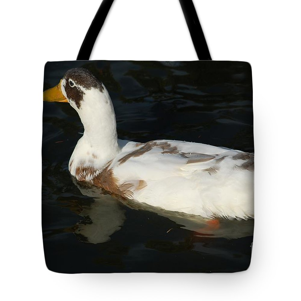 Bird Tote Bag featuring the photograph Brown And White Duck by D Nigon