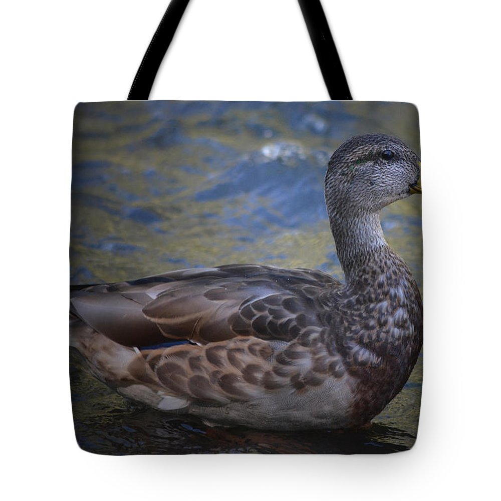 Mallard Tote Bag featuring the photograph Brown Feathered Girl by Richard Andrews