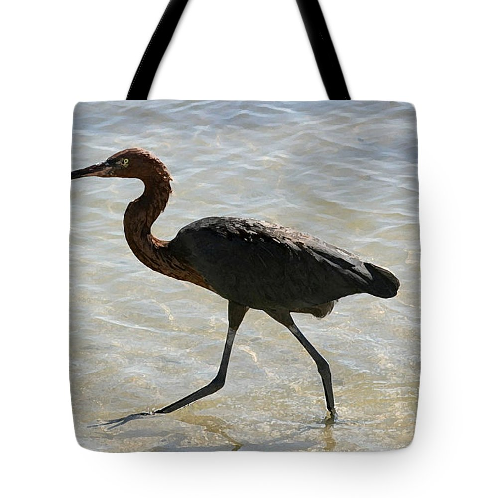 Heron Tote Bag featuring the photograph Brown Heron by Mary Haber
