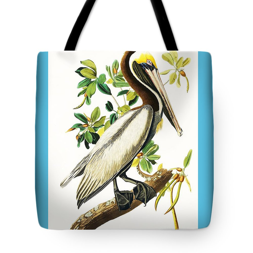 Pd: Print Tote Bag featuring the painting Brown Pelican by Pg Reproductions