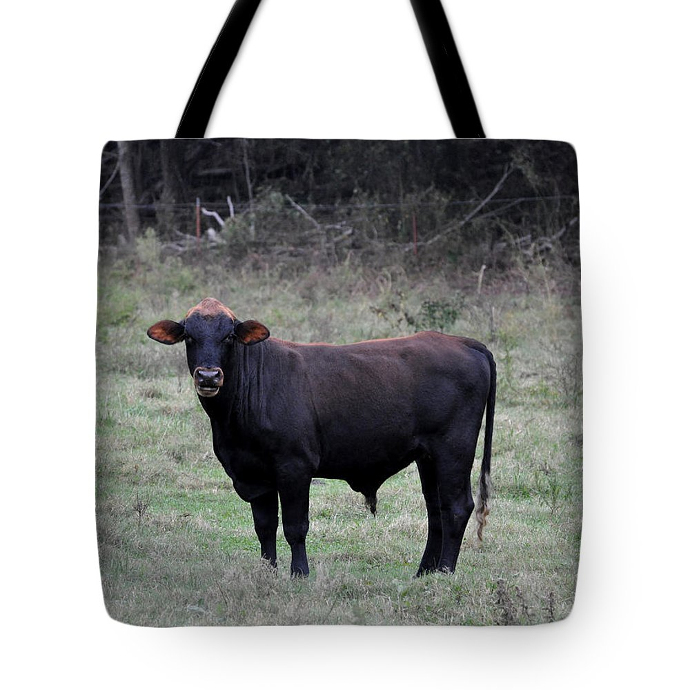 Animals Tote Bag featuring the photograph Brutus by Jan Amiss Photography