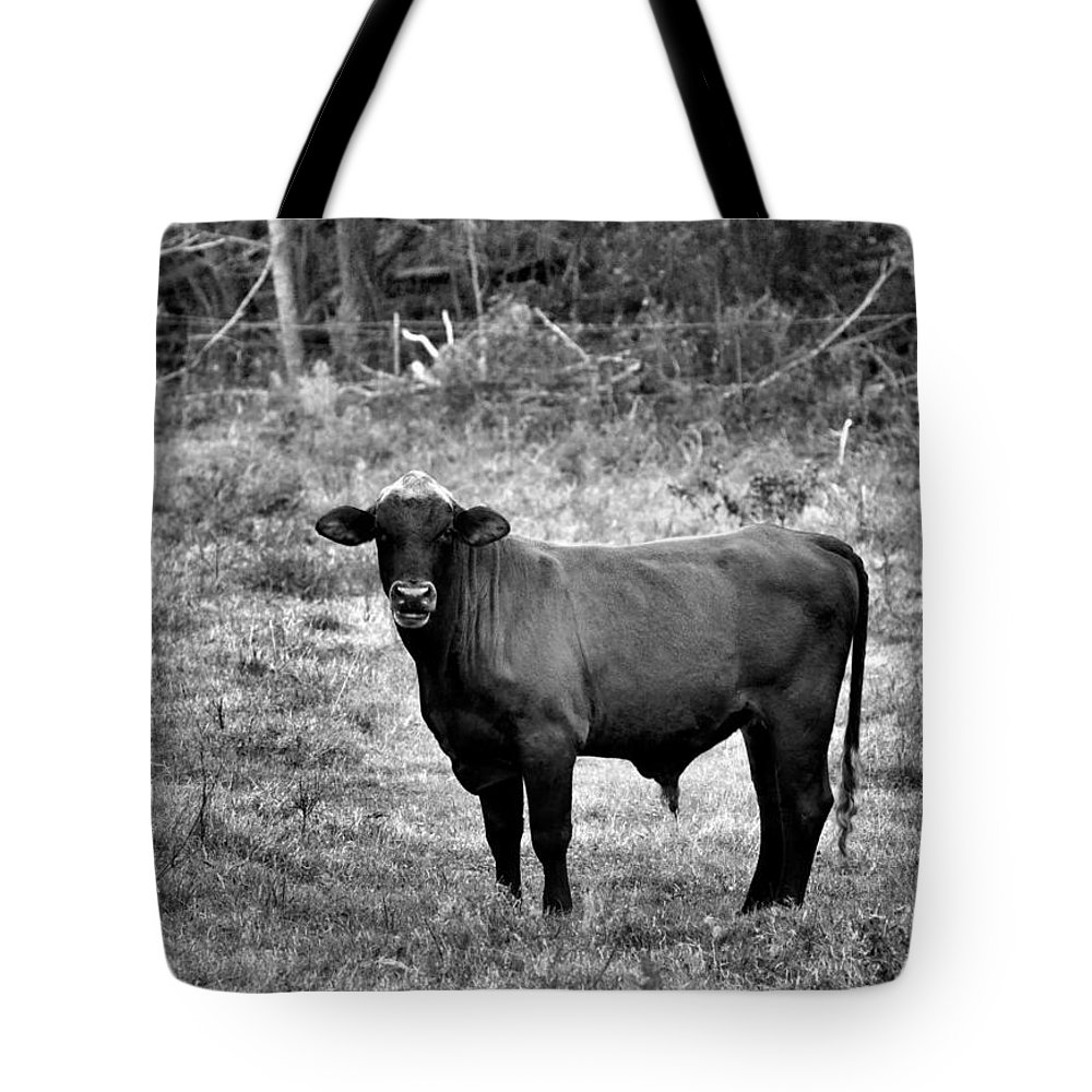 Animals Tote Bag featuring the photograph Brutus2 by Jan Amiss Photography