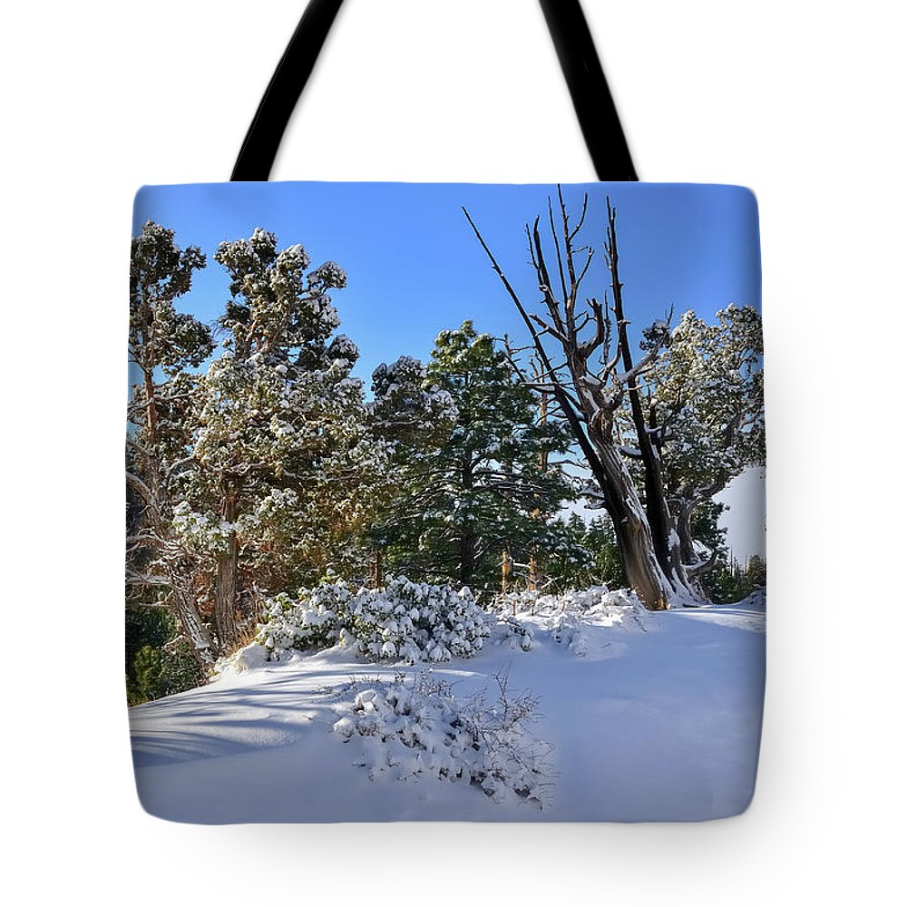 Ali Tote Bag featuring the photograph Bryce Canyon Snowfall by Jorge Moro