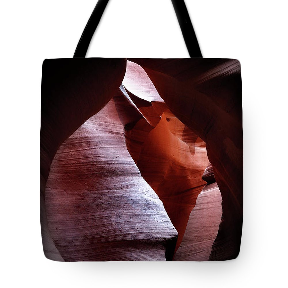 Bud Tote Bag featuring the photograph Bud by Nicholas Blackwell