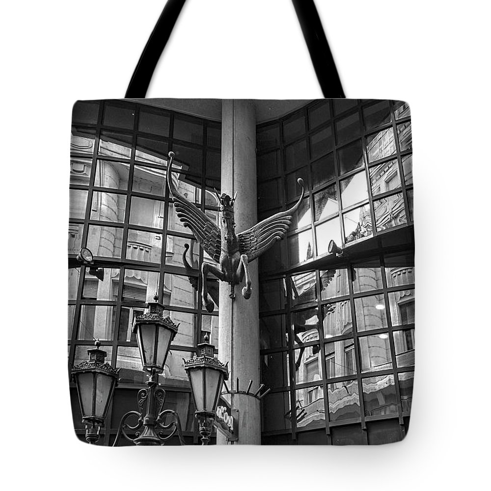 Budapest Tote Bag featuring the photograph Budapest Reflections by Sharon Popek