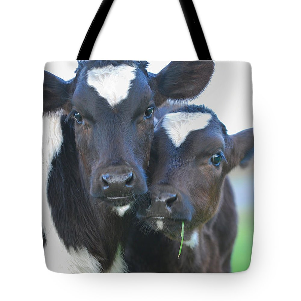 Cow Tote Bag featuring the photograph Buddies by Michael Bartlett
