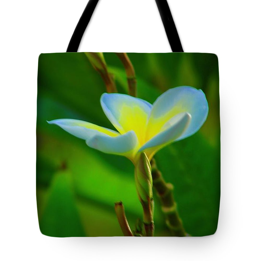 Plumeria Tote Bag featuring the photograph Buds And A Blossom by Craig Wood