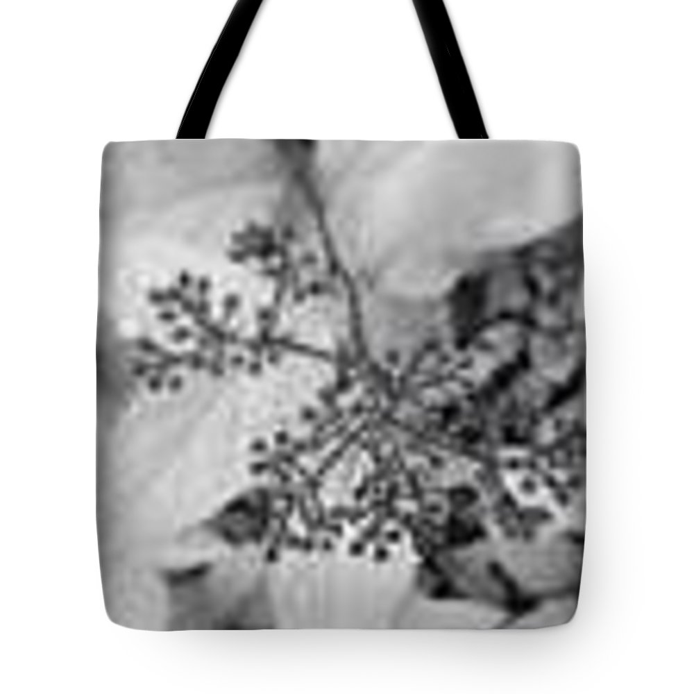 Buds Tote Bag featuring the photograph Buds In Black And White by Kayla Reno