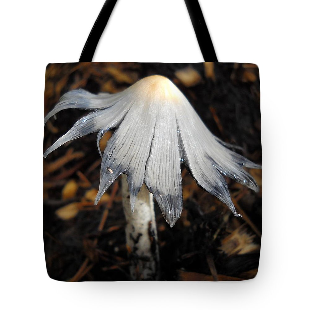 Mushroom Tote Bag featuring the photograph Bug On A Mushroom by Kent Lorentzen