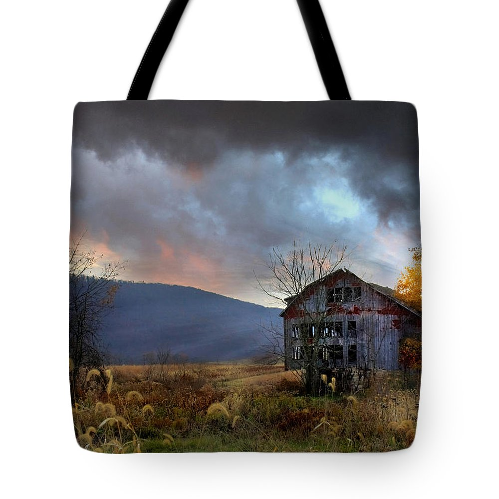 Barn Tote Bag featuring the photograph Built To Last by Lori Deiter