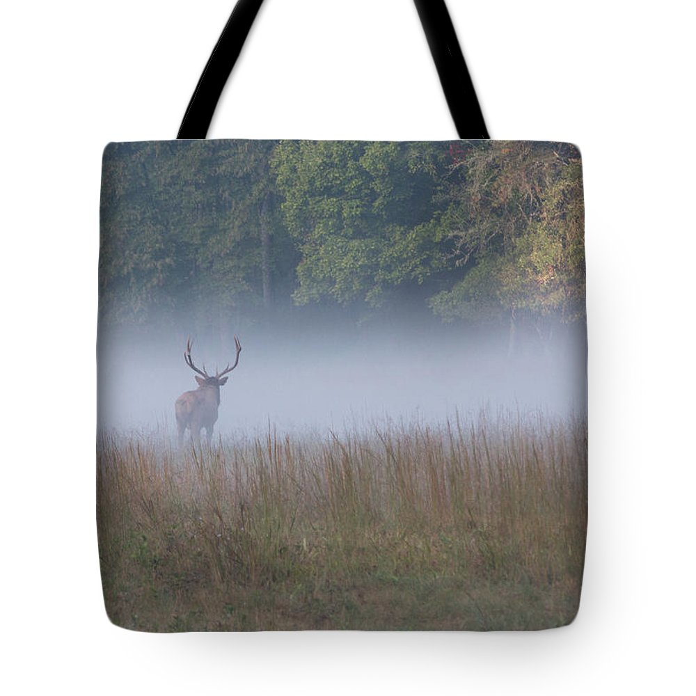 Elk Tote Bag featuring the photograph Bull Elk Disappearing In Fog - September 30 2016 by D K Wall