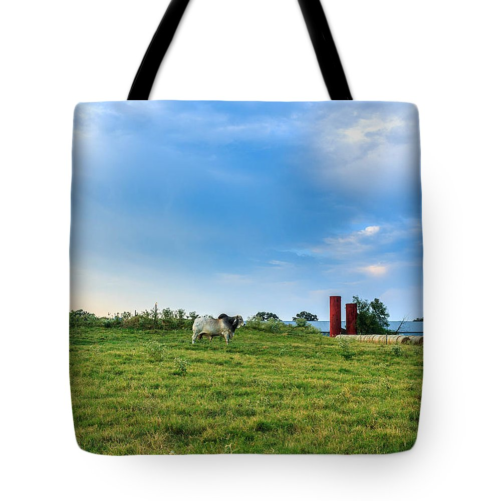 Landscapes Tote Bag featuring the photograph Bull In An East Texas Field by Abe