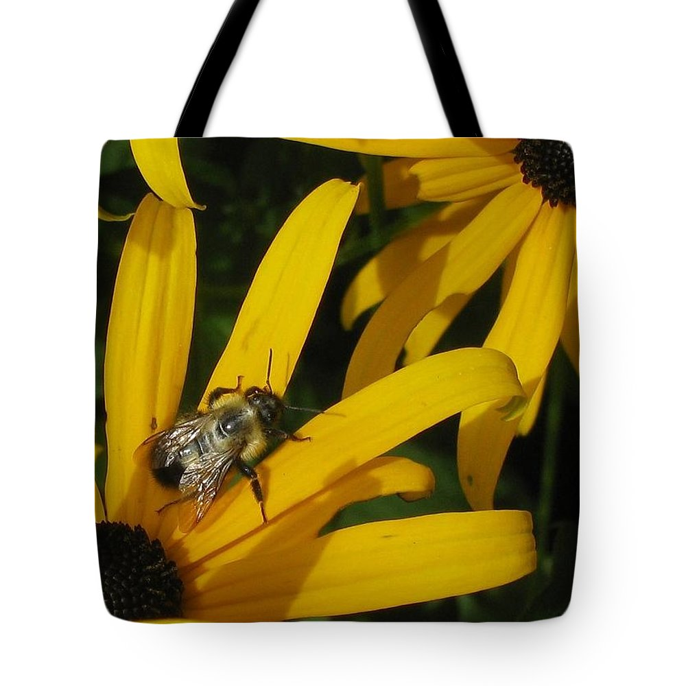 Black Tote Bag featuring the photograph Bumble Bee Sitting On Black-eyed Susan by GinA Captured Images of Maine