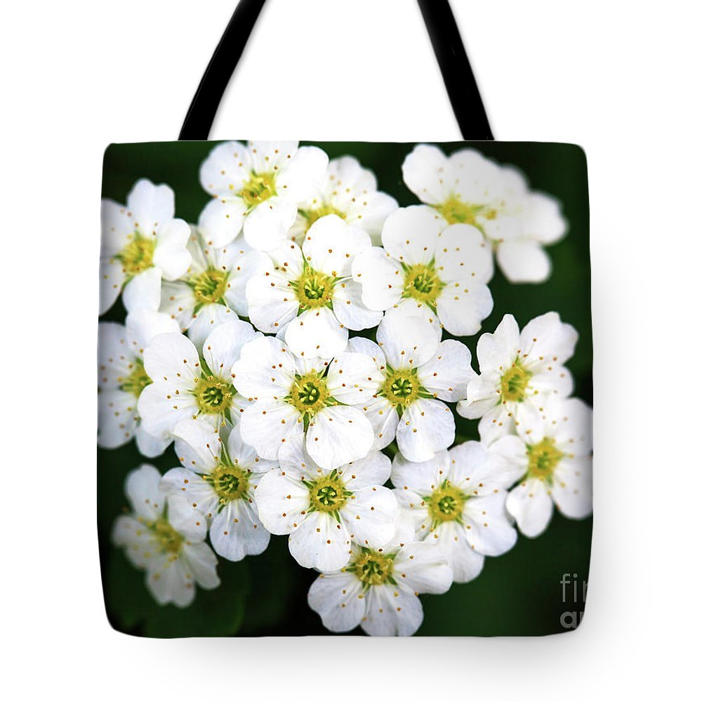 Bundle Tote Bag featuring the photograph Bundle by John Rizzuto