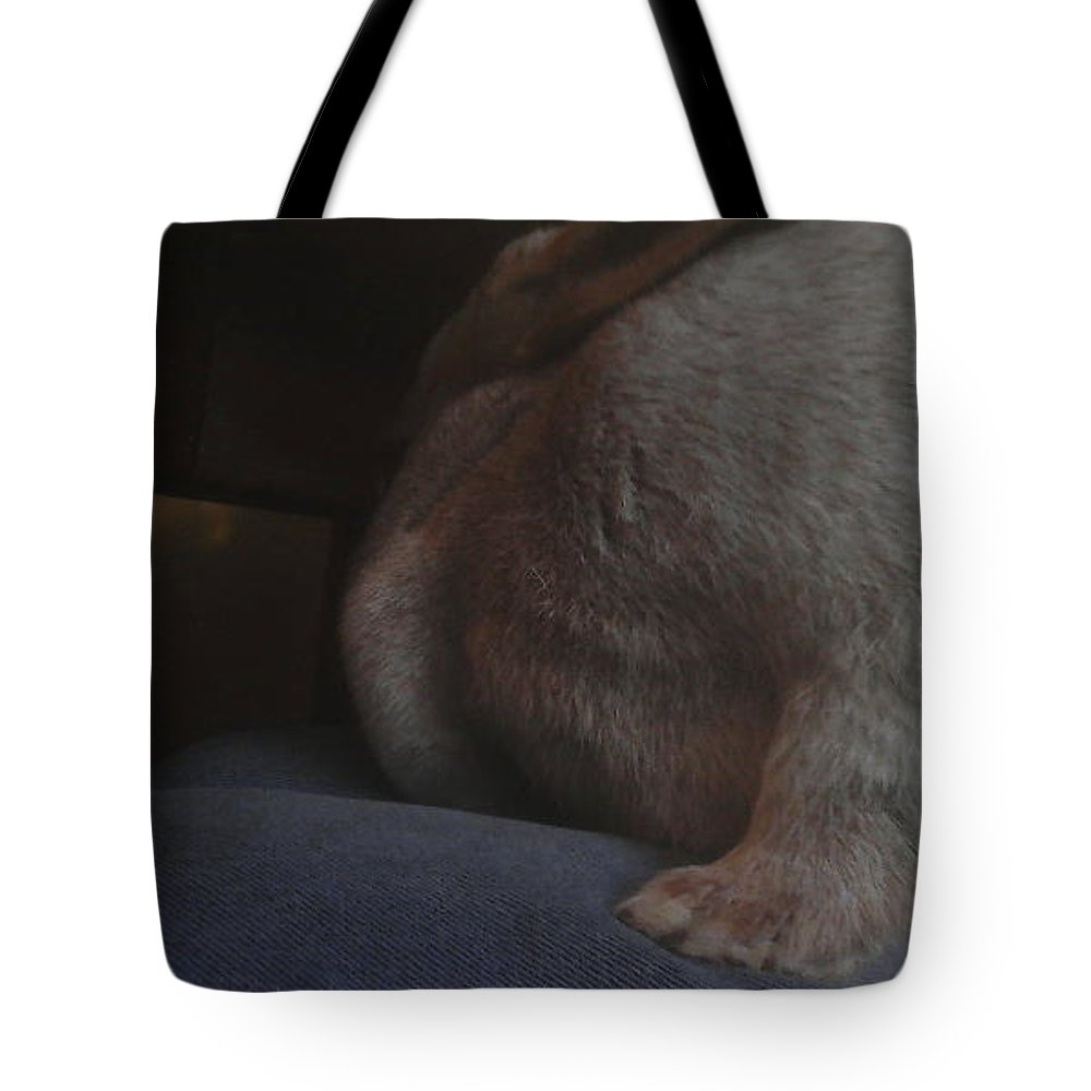 Bunny Photo Tote Bag featuring the photograph Bunny Fur Days by Rowan Lighthouse