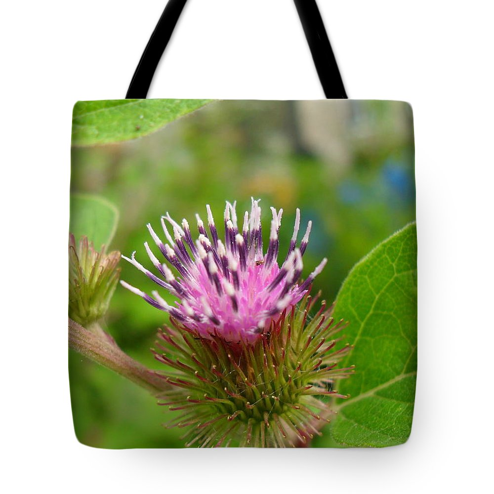 Burdock Tote Bag featuring the photograph Burdock by Peggy King
