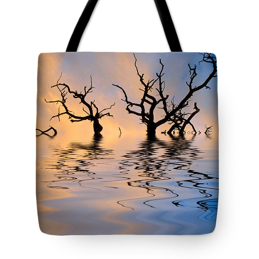 Original Art Tote Bag featuring the photograph Slowly Sinking by Jerry McElroy