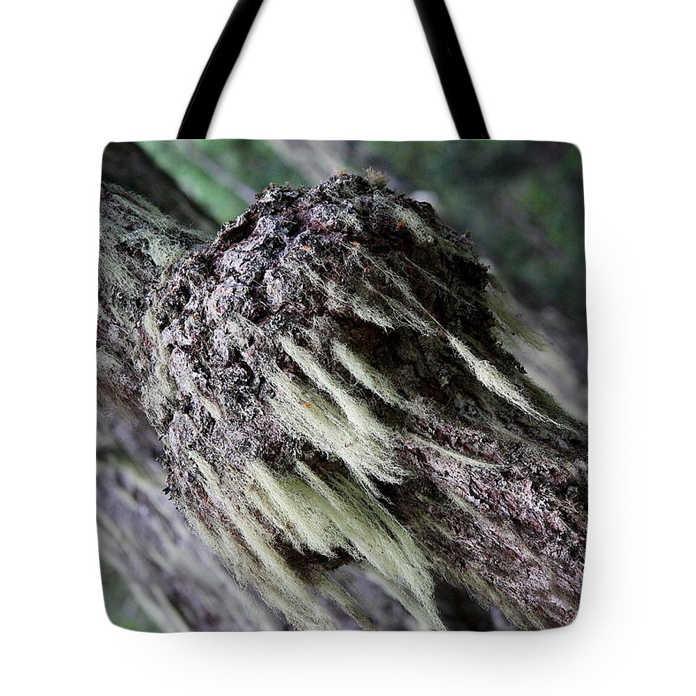 Adventure Tote Bag featuring the photograph Burl Two by Nicholas Miller