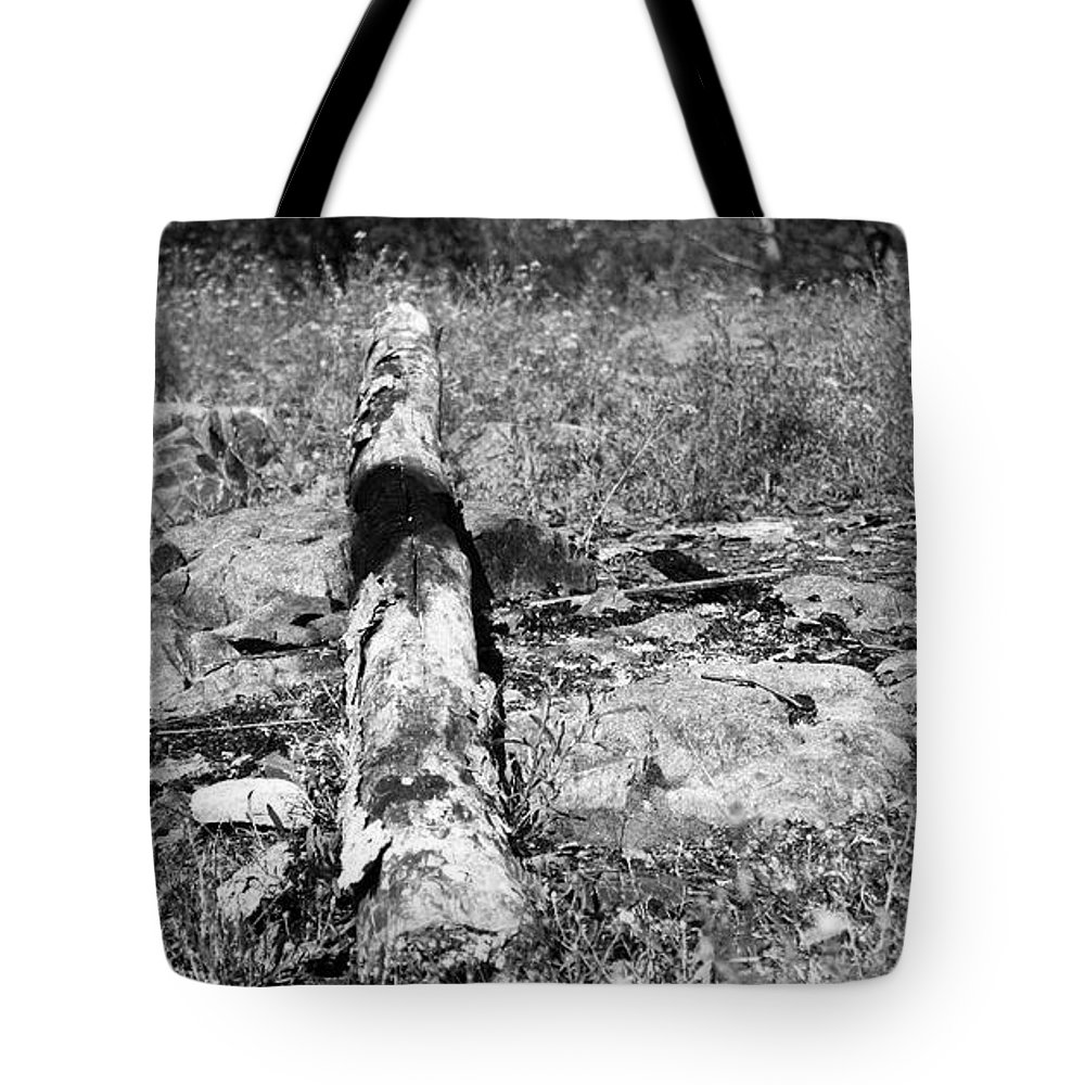 Log Tote Bag featuring the photograph Burnt Log by Kendall Tabor