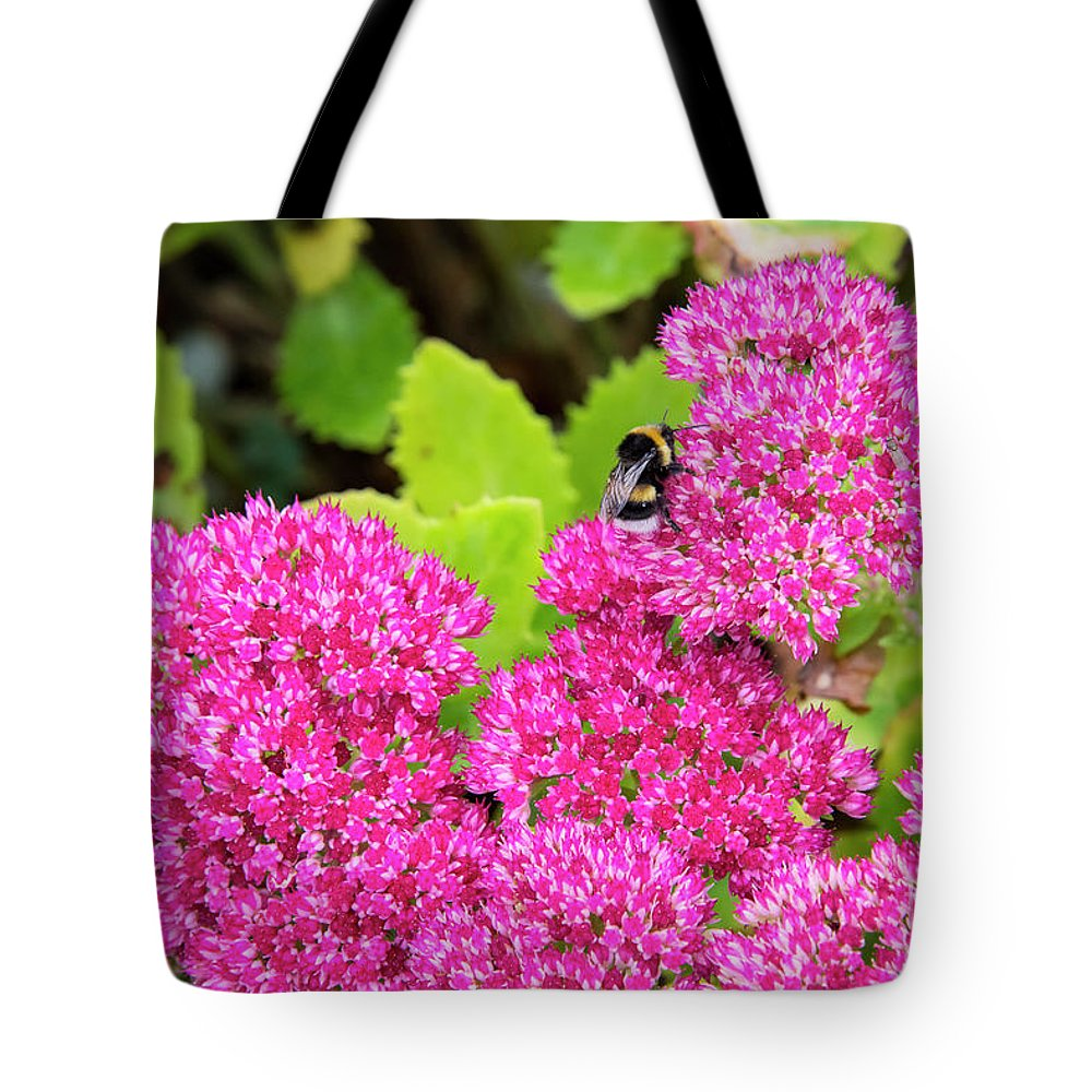 Cawdor Castle Tote Bag featuring the photograph Busy Bee by Bob Phillips