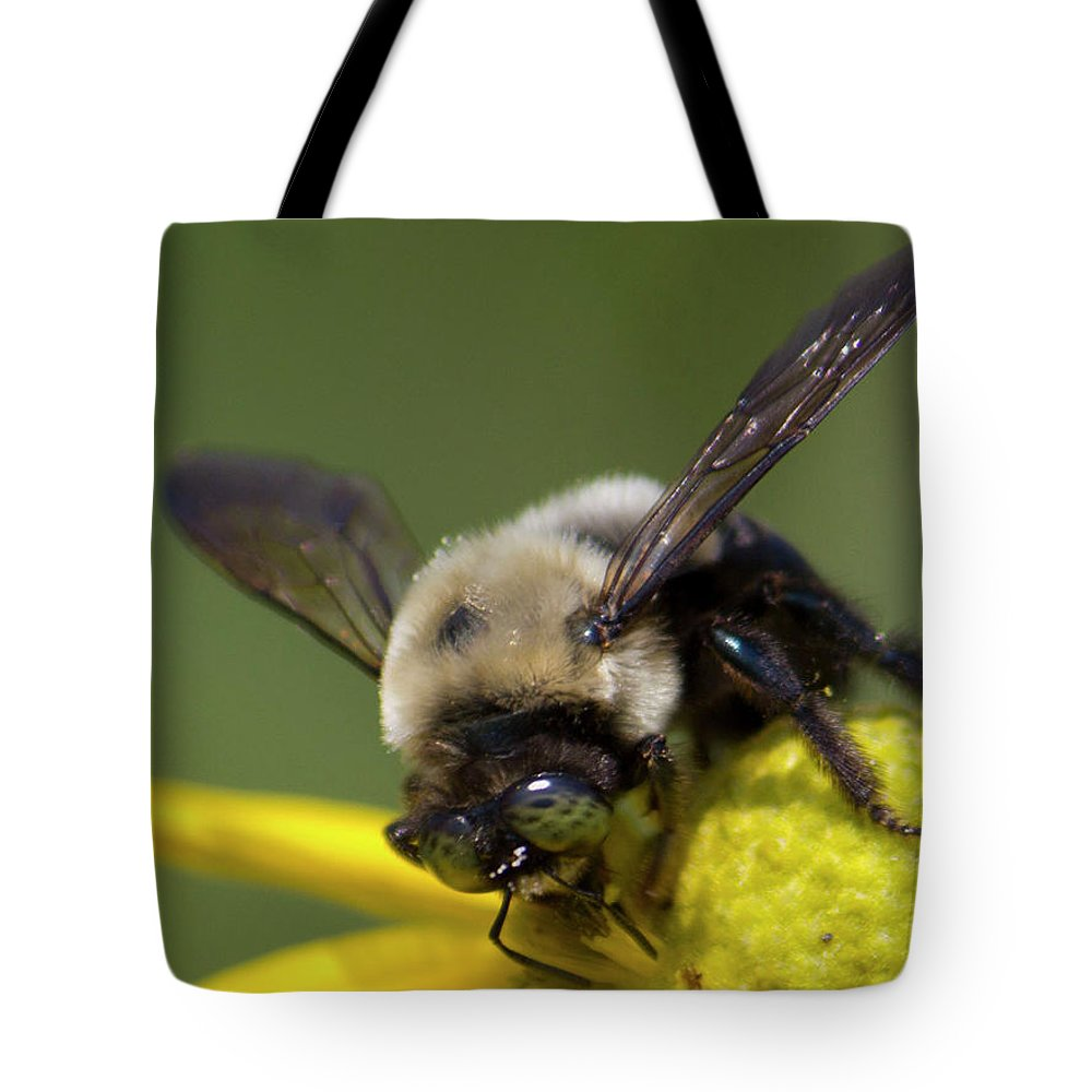 Backyard Tote Bag featuring the photograph Busy Bee by Shelley Neff