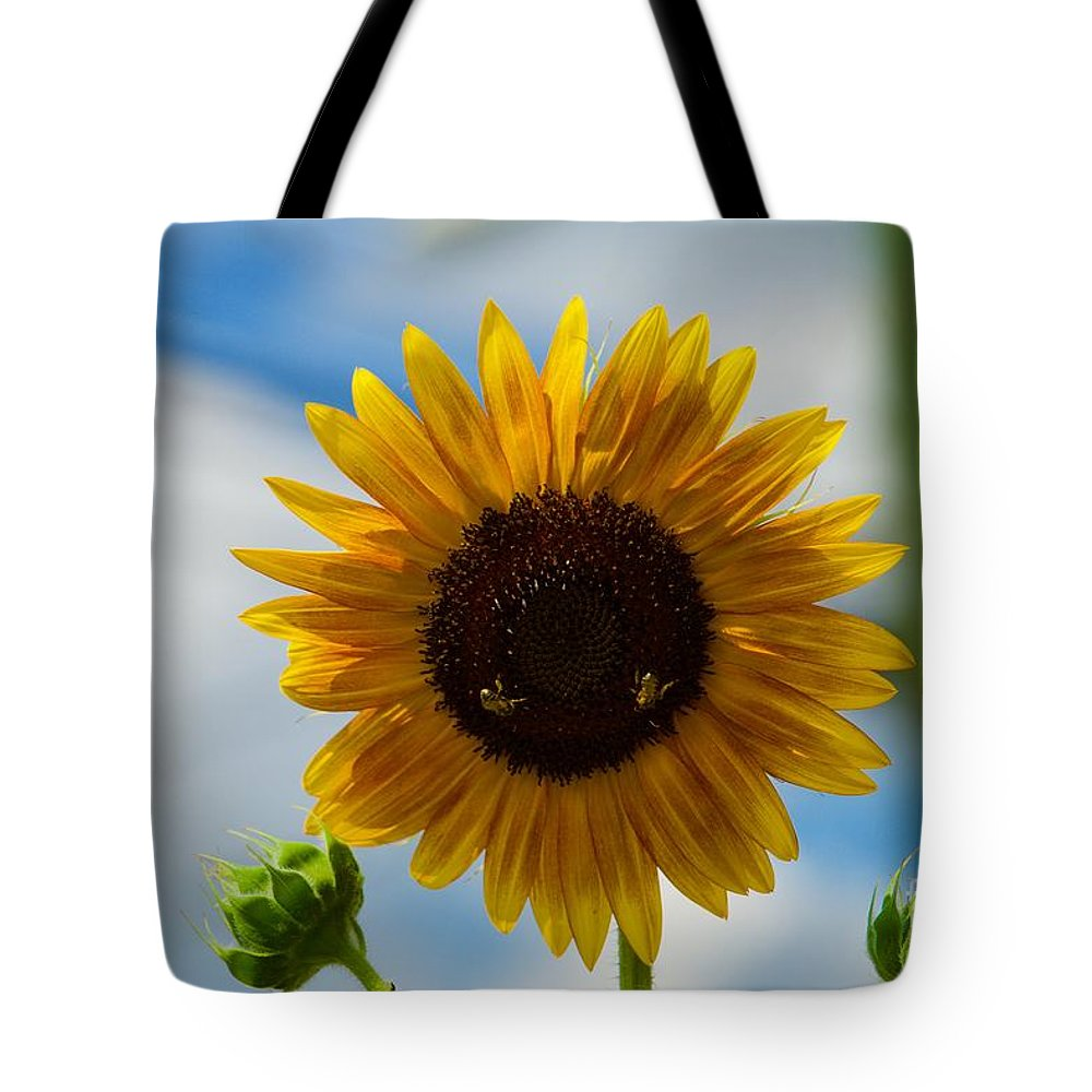 Bee Tote Bag featuring the photograph Busy Bees by Jasmin Hrnjic