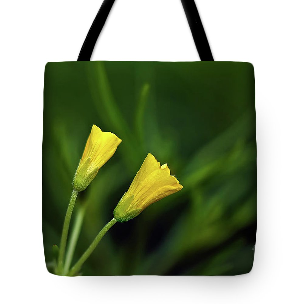 Buttercup Tote Bag featuring the photograph Buttercup Babies by Lois Bryan