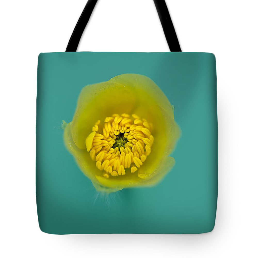 Buttercup Tote Bag featuring the photograph Buttercup, Ranunculus by Christy Cox