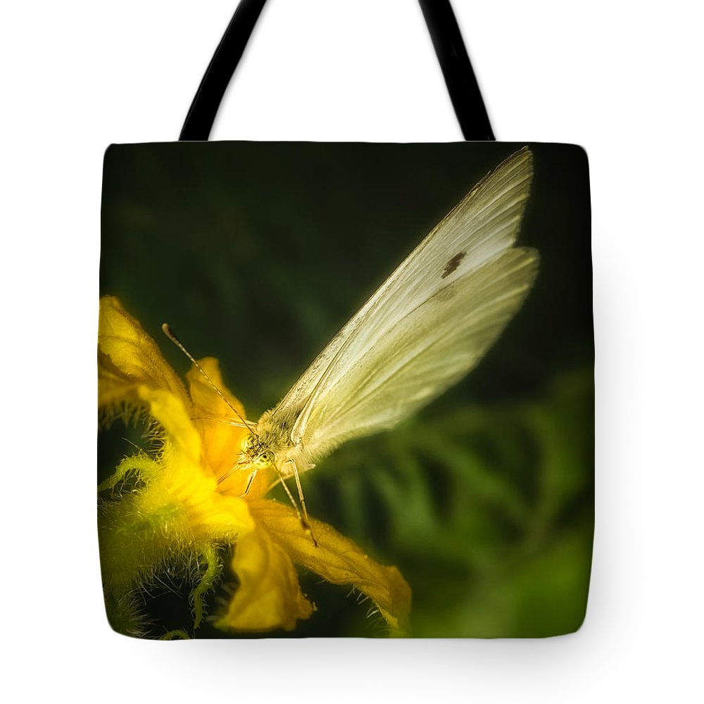 Animals Tote Bag featuring the photograph Butterflies And Blossoms by Rikk Flohr