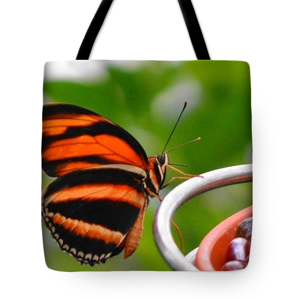 Butterflies Tote Bag featuring the photograph Butterflies Are Blooming by Debra Miller