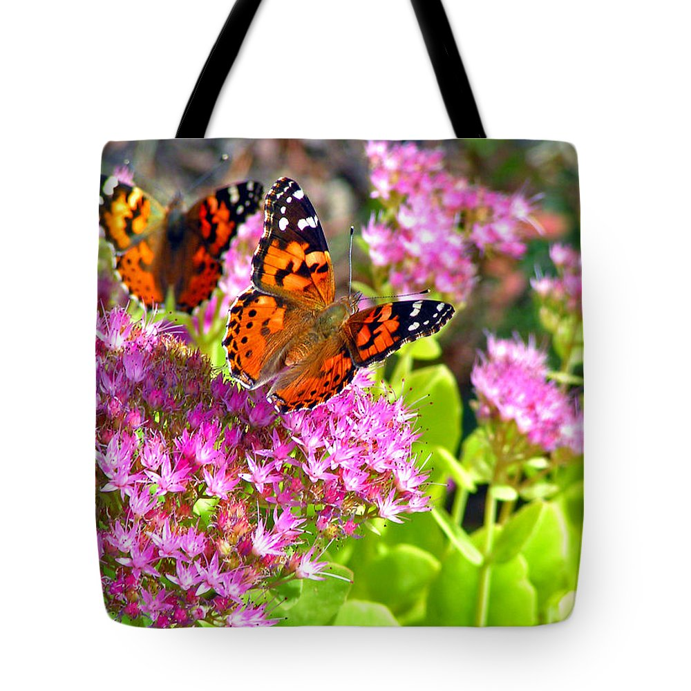 Butterflies Garden Colorado Nature Flowers Rocky Mountains Tote Bag featuring the photograph Butterflies by George Tuffy