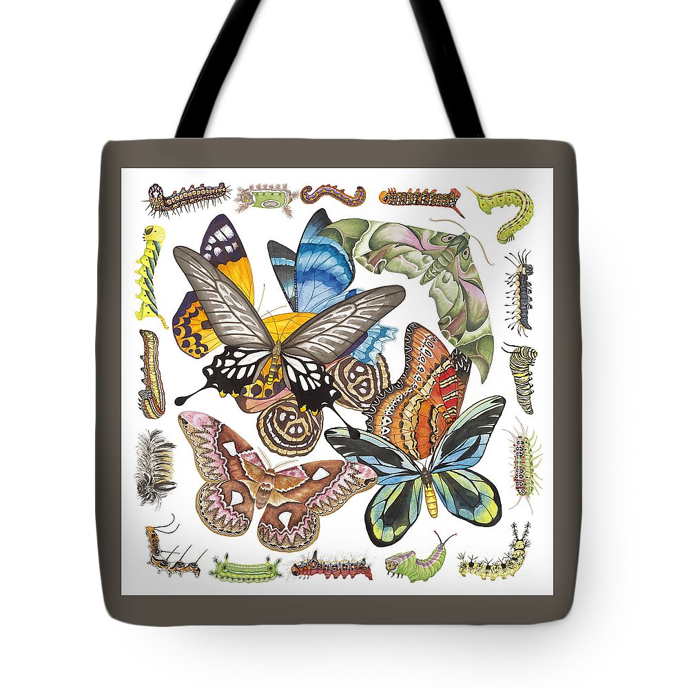 Butterflies Tote Bag featuring the painting Butterflies Moths Caterpillars by Lucy Arnold
