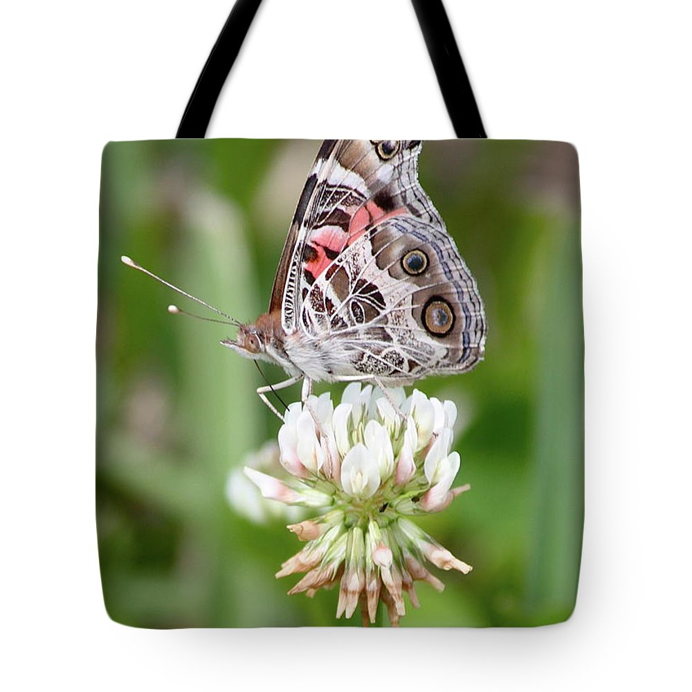 Butterfly Tote Bag featuring the photograph Butterfly And Bugs On Clover by Carol Groenen